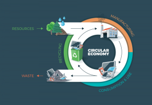 Understanding Circular Economy